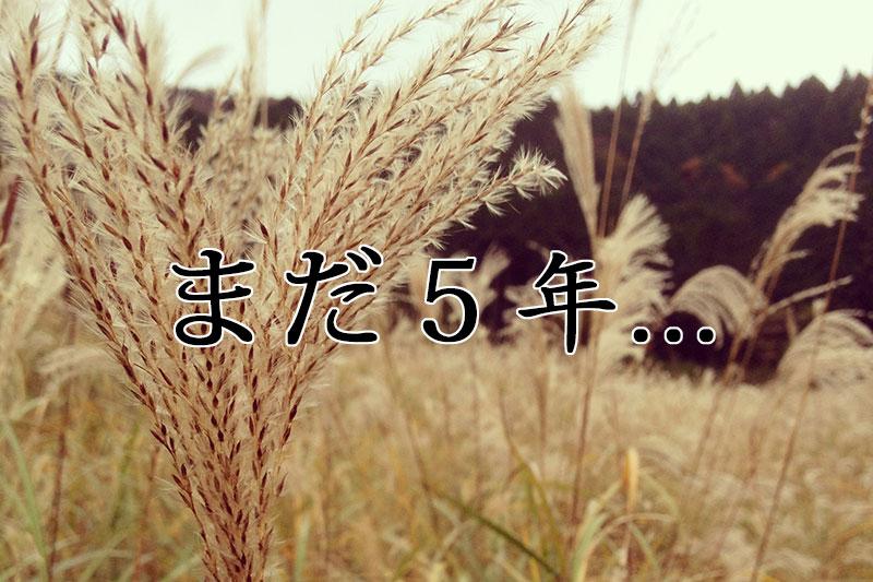 【追悼:東日本大震災から5年】災害の恐ろしさを忘れない為に