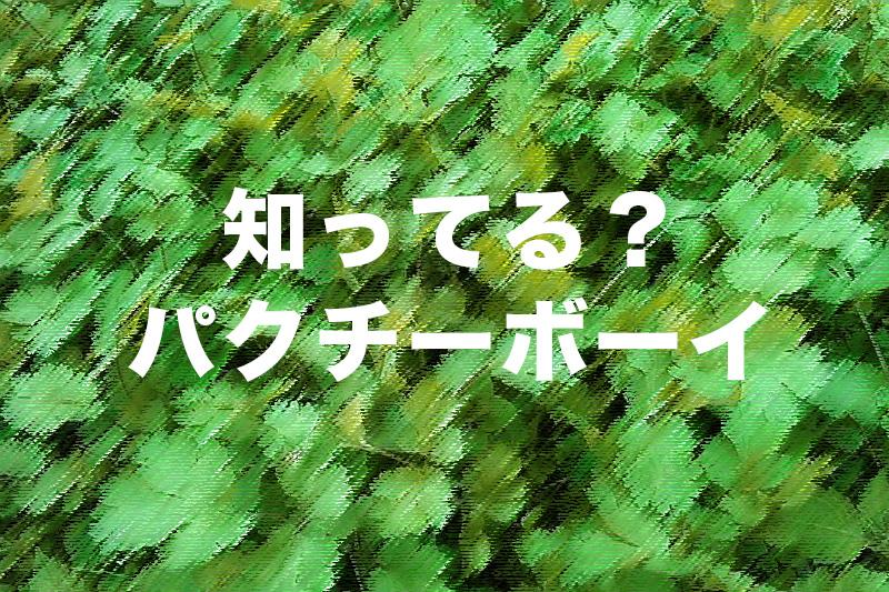 【パクチーボーイ】エダジュンさんが作るパクチー料理がハンパなくパクチー